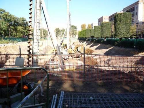 Arrancan árboles y siembran cemento