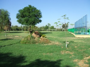 El Arboretum del Club de Campo de Sevilla.