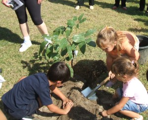 http://jardinesdelaoliva.files.wordpress.com/2009/10/ninos-plantando-un-arbol-pulpo.jpg?w=300&h=243