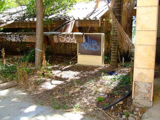 01 junio 2010 asociaci n amigos de los jardines de for Jardin americano sevilla
