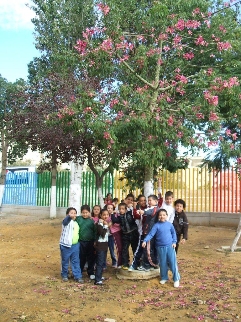 Alumnos de colegio fray bartolom de las casas