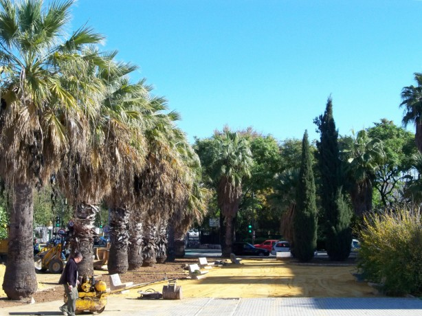 Restauración de zonas ajardinadas del Distrito Sur
