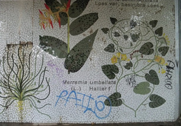 Los grafiteros no han respetado ni el mosaico inspirado en las láminas de José Celestino Mutis.