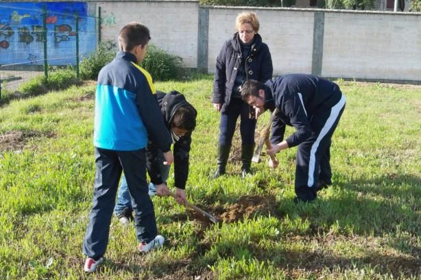 Los primeros esfuerzos para la construcción del Arboreto Las Letanías