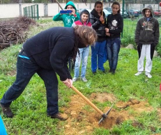 El profesor Carlos ayudando con el pico a cavar el hoyo para plantar el lapacho rosado.