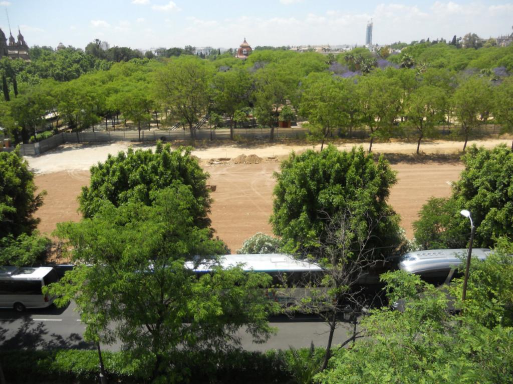 Las vicisitudes de una palmerita en los jardines del prado for Jardines del prado