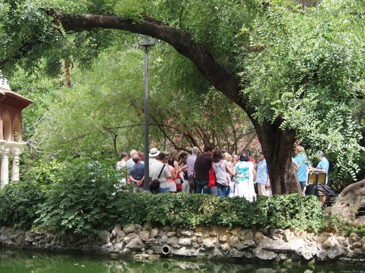 Nuestro Parque de María Luisa, es uno de los emblemas de Sevilla y que necesita protección y cariño.