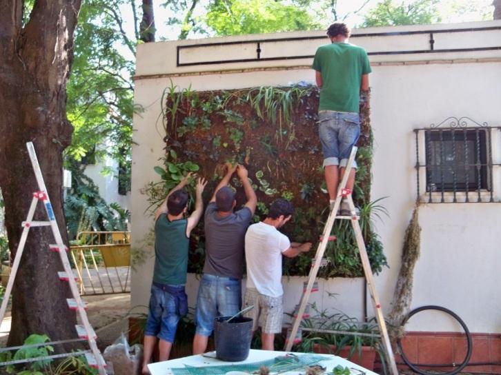 Hasta última hora. Montando un jardín vertical.