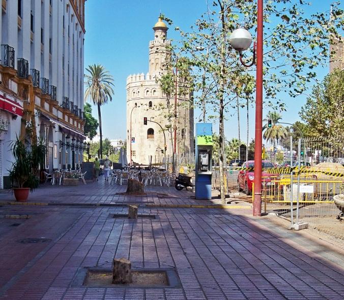 Por qué no hay un concejal delegado de parques y Jardines que defienda los árboles de Sevilla.