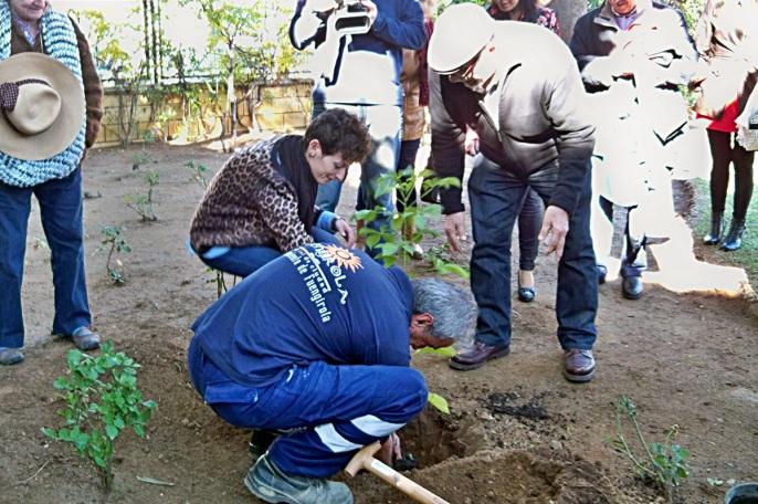 Momento de la Plantación del baobab en el Parque del Sol de Fuengirola.