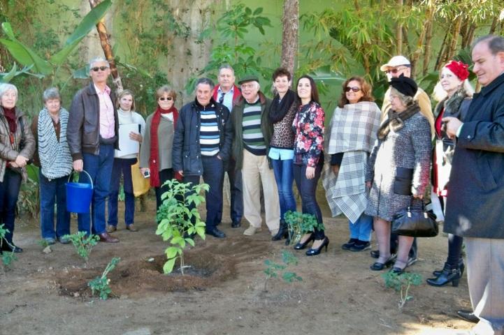Los representantes de la Plataforma y el baobab del Parque del Sol de Fuengirola.