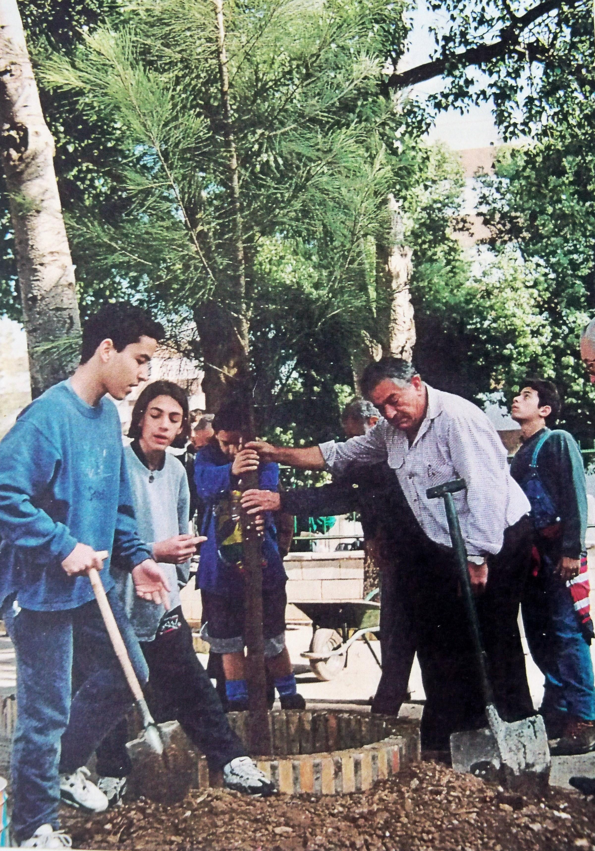 El 25 de febrero de 1997 plantamos una casuarina en el patio del recreo del