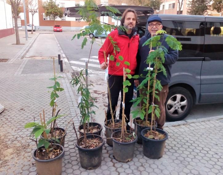 Con José L. Mena Feria, representante del AMPA del colegio Juan XXIII recogiendo los árboles de nuestro vivero.
