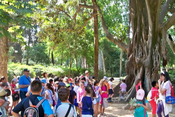 Jacinto Martínez, explicando a los 75 alumnos del colegio Jorge Juan y Antonio de Ulloa, los árboles más ornamentales del Parque de María Luisa.