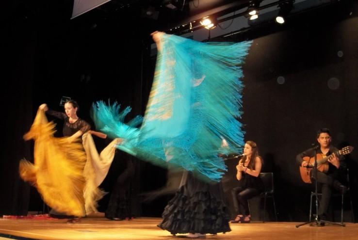 El baile flamenco...y el mantón de Manila.