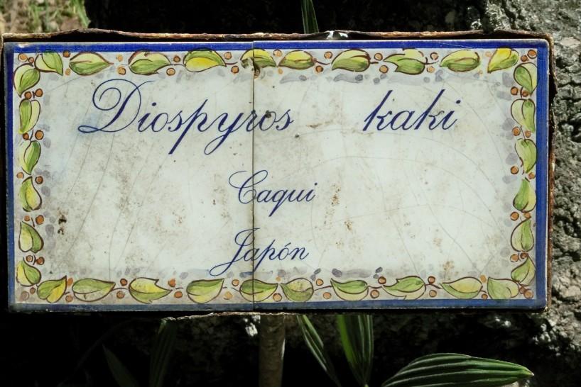 Aún se conservan algunas placas de cerámicas de la época de Tomás Azcárate Bang, primer Director de la Agencia de Medio Ambiente de la Junta de Andalucía.