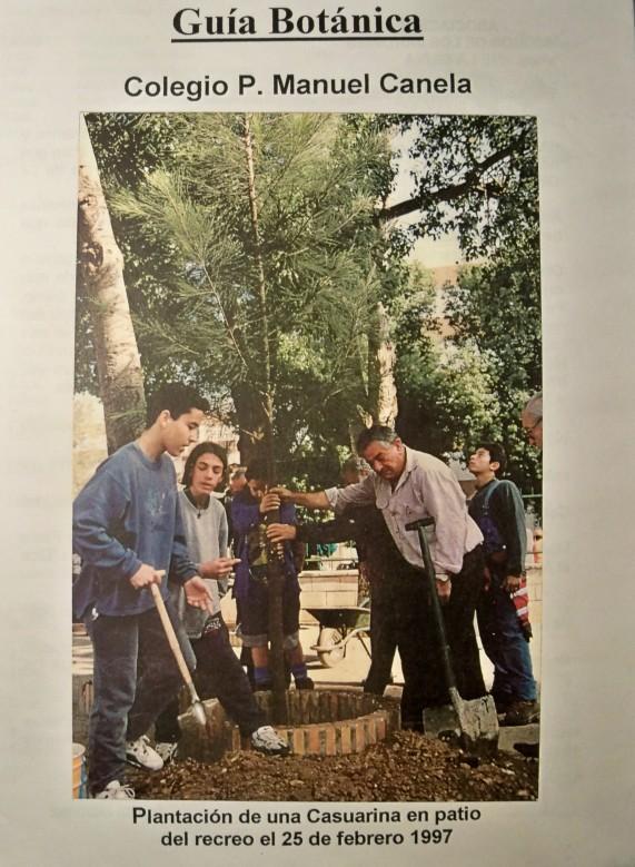 Guía botánica del colegio Manuel Canela. Que los alumnos actualizaran con el trabajo de campo que han realizado.