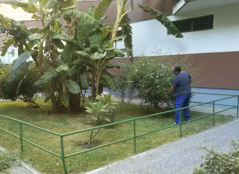 Nuestros jardines de la barriada Ntra. Sra. de la Oliva