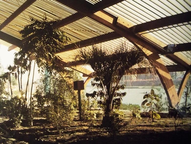 Las plantas tropicales en el Umbráculo del Jardín Americano en 1992.
