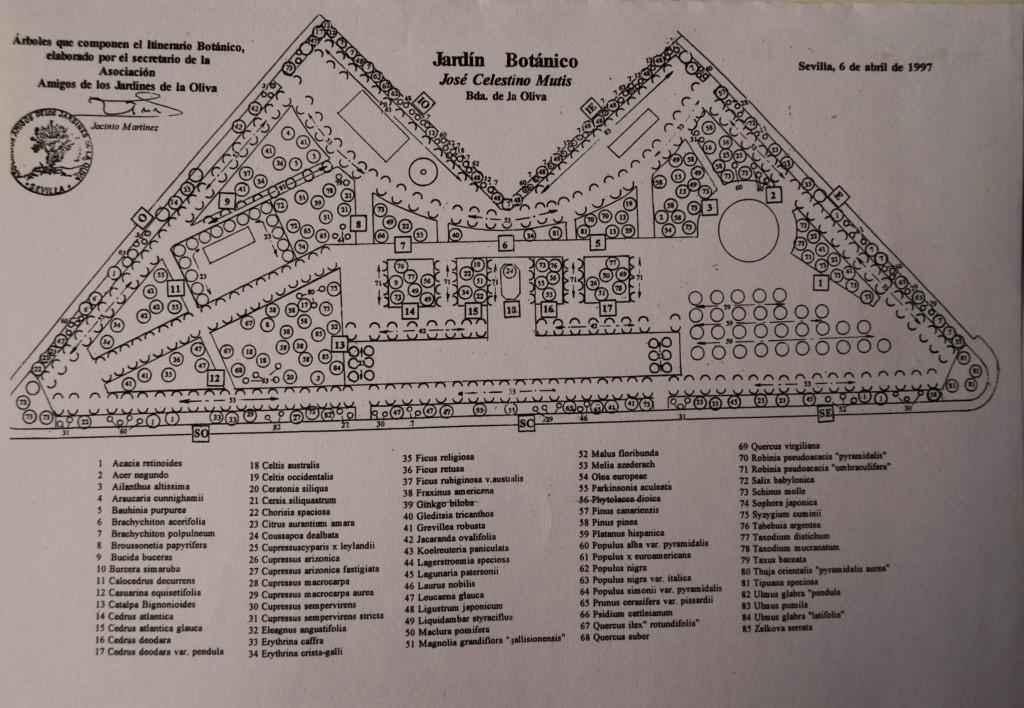 Plano del parque José Celestino Mutis. Indica los parterres y la ubicación de los árboles.