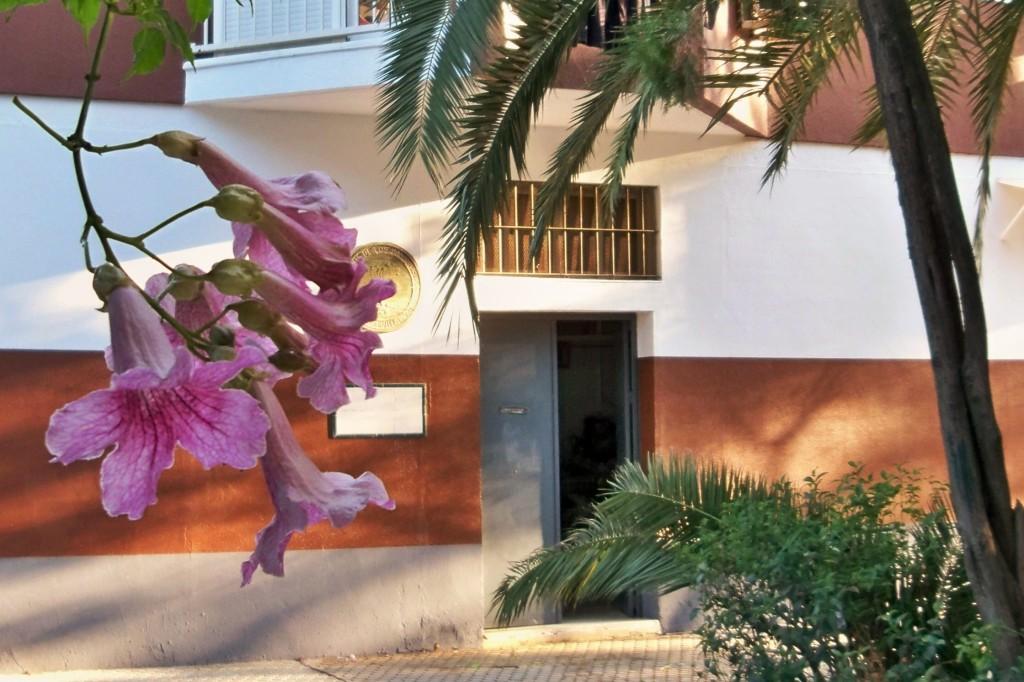 Sede de la Asociación Amigos de los Jardines de la Oliva.