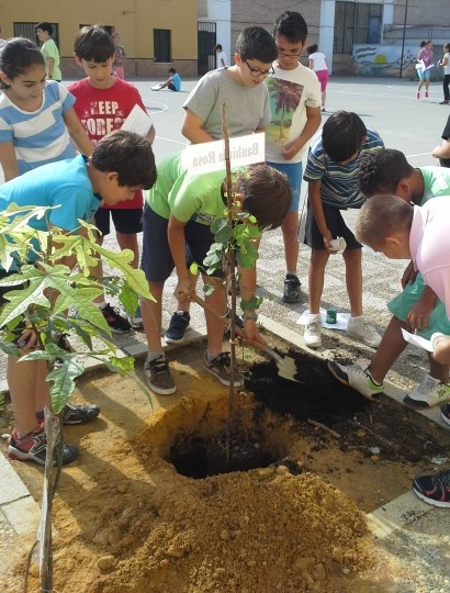 Los alumnos realizaron la plantación