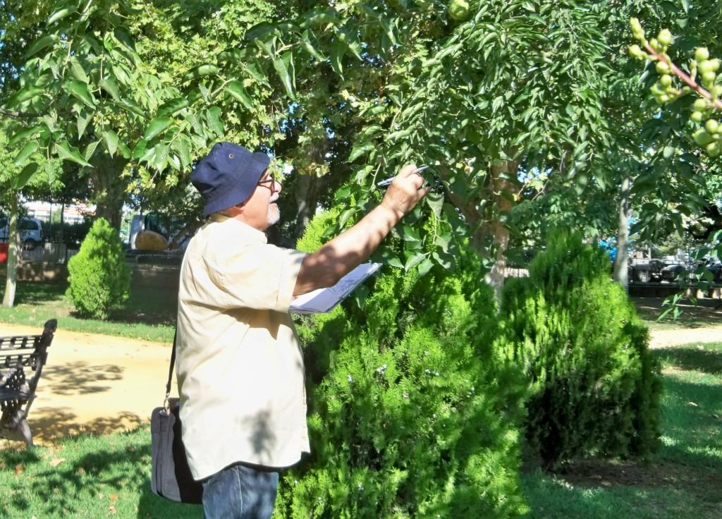 Jacinto Martínez, identificando los árboles de los Jardines de las Delicias