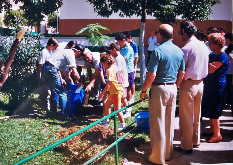 El día 21 de septiembre de 1991, plantamos una acacia de Constantinopla en el jardín lateral que hay junto a la Peña Sevillista de la barriada Ntra. Sra. de la Oliva