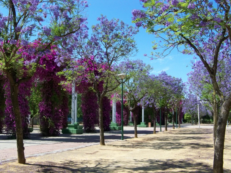 Parque José Celestino Mutis