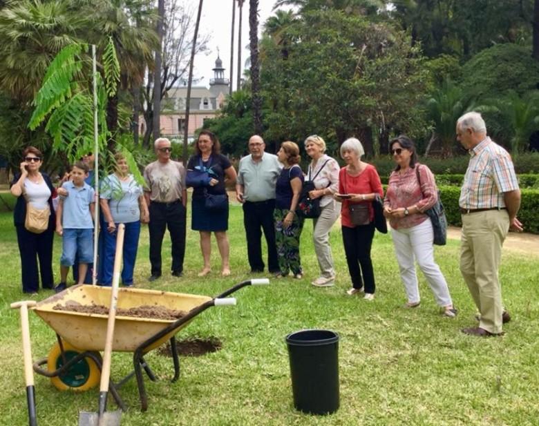Flamboyán Asociación Amigos De Los Jardines De La Oliva