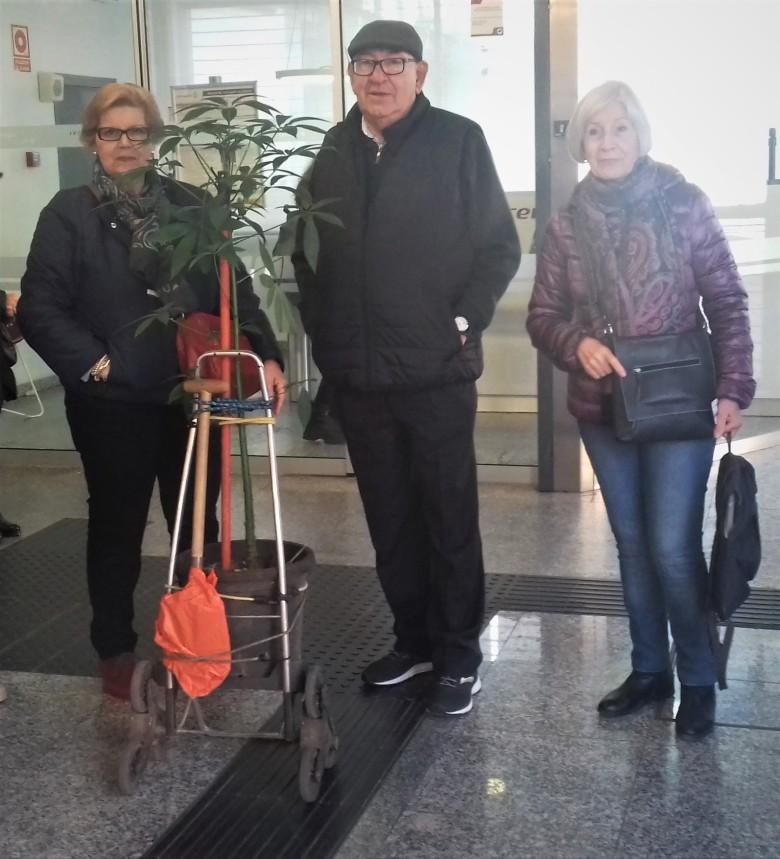 2.-Los primeros en llegar al Apeadero Virgen del Rocío (el árbol y la pala.